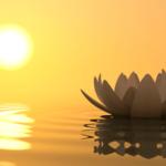 Mindfulness Meditation compressor